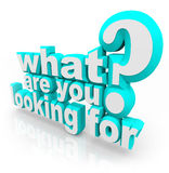 What Are You Looking For Question Mission Quest Goal Search. What Are You Looking For question asking your mission, goal, quest or objective in searching for Royalty Free Stock Photography