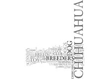 What You Should Know About Chihuahua Breeders Word Cloud. WHAT YOU SHOULD KNOW ABOUT CHIHUAHUA BREEDERS TEXT WORD CLOUD CONCEPT Stock Photography