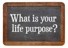 What is your life purpose ? royalty free stock image