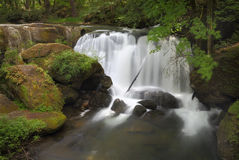 Whatcom Falls, Bellingham. Whatcom falls in the soft, morning light, In the Pacific Northwest city of Bellingham, Washington State Stock Photography