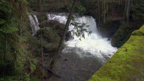 Whatcom Falls, Bellingham USA. 4K UHD stock footage