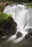 Whatcom Falls, Bellingham, Washington Fotografering för Bildbyråer