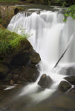 Whatcom Falls, Bellingham, Washington. Whatcom falls in the soft, morning light, In the Pacific Northwest city of Bellingham, Washington State Stock Image