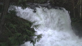 Whatcom Falls, Bellingham, Washington, USA. 4K UHD stock footage