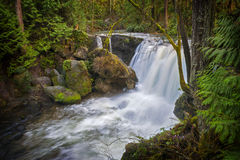 Whatcom Falls Royalty Free Stock Photo