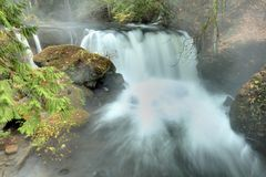 Whatcom Falls Morning, Bellingham, Washington Royalty Free Stock Images