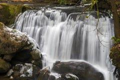 Whatcom Falls Park Stock Image
