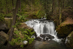 Whatcom Falls Park. In Bellingham, Washington, where a cascading waterfall is its centerpiece. The falls in the park are on Whatcom Creek, leading from Lake Royalty Free Stock Image