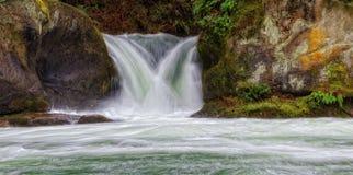 Whatcom Falls Park, Washington State Stock Image