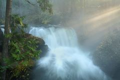 Whatcom Falls Sun Shafts, Bellingham, Washington Stock Photography