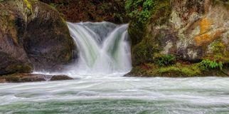 Whatcom tombe parc, Washington State Image stock