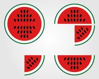 Whatermelon vector illustration, isolated on grey background royalty free illustration
