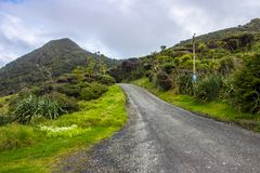 Whatipu regional park. S near to Auckland city, at west coast Stock Photos