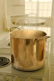 Whats Cooking - Vertical. Big Pot of boiling something Stock Image