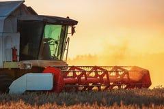 Whe mûr d'or de recolte mécanique d'agriculture de moissonneuse de cartel photos libres de droits