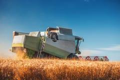 Whe maturo dorato di raccolto meccanico di agricoltura della mietitrebbiatrice Fotografia Stock