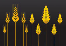 Wheat 1. Vector illustration Wheat icon 1 Stock Photography