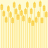 Wheat. Field background, abstract art Royalty Free Stock Images