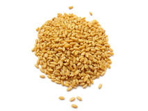 Wheat. Heap of golden color wheat isolated on white royalty free stock photos