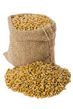 Wheat. In small burlap sack Stock Images
