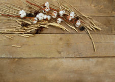 Free Wheat And Cotton On A Wooden Background Royalty Free Stock Photography - 74496737