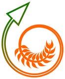 Wheat arrow. Illustrated isolated wheat arrow logo design Stock Images