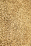 Wheat background. Wheat raw for background. Photo 2 Royalty Free Stock Image