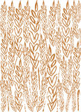 Wheat background. For all design Royalty Free Stock Photo