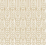 Wheat background. For all design Stock Photography