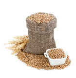 Wheat in bag Stock Images