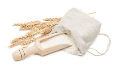 Wheat in bag and scoop Stock Image