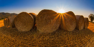 Wheat Bale Royalty Free Stock Images
