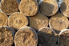 Wheat bale of hay on stock Stock Photos