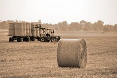 Wheat ball from field to plat. Wheat ball from tractor after harvest Stock Photography
