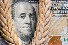Wheat on bank note Stock Photo