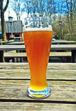 Wheat bavarian beer in traditional glass at beer garden Royalty Free Stock Photography