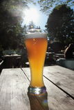 Wheat beer. Bavarian beer in a beer garden Royalty Free Stock Image