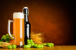 Wheat Beer and Brewing Ingredients with Copy Space Royalty Free Stock Photos