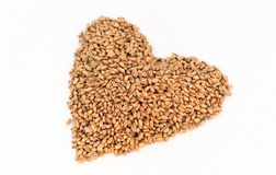Wheat berry heart Stock Images