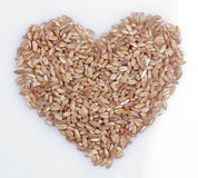 Wheat berry heart Stock Image