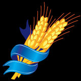 Wheat with blue tape Stock Images