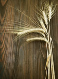 Wheat Border Royalty Free Stock Photos
