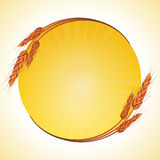 Wheat border and starburst Stock Images