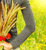 Wheat bouquet royalty free stock photo