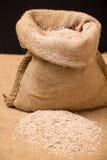 Wheat bran Stock Photos