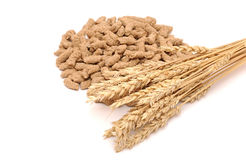 Wheat bran with ear Stock Photos