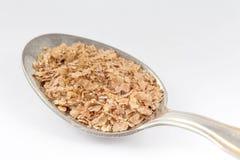 Wheat bran Triticum aestivum. Isolated on white background Stock Image