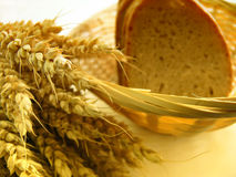 Wheat and bread Stock Images