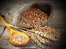 Wheat bread Stock Photos