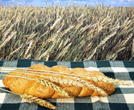 Wheat and bread on background of Field Royalty Free Stock Image